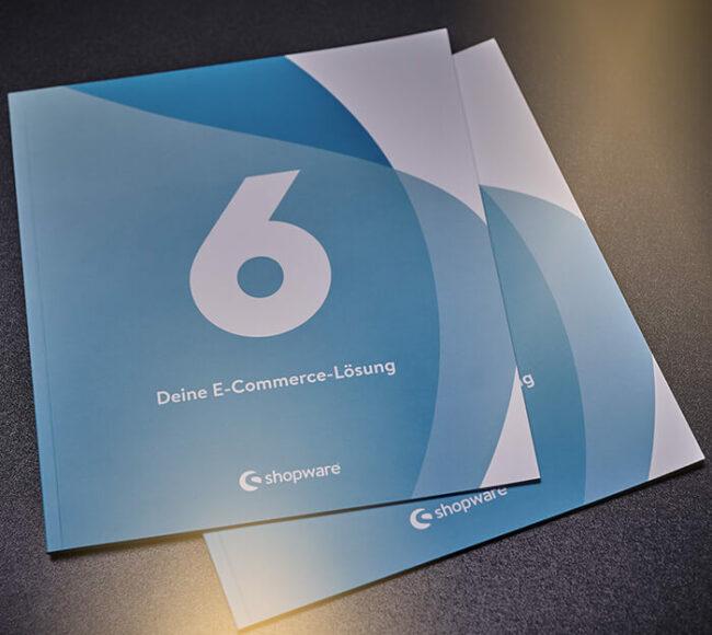 shopware 6 - Deine E-Commerce-Lösung Broschüre